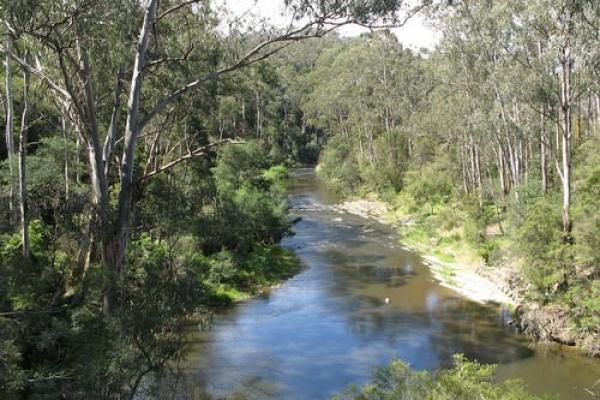 نهر يارا من اخطر انهار العالم