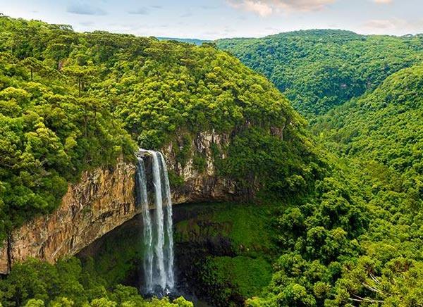 دليل شامل عن منطقة الأمازون بالكامل